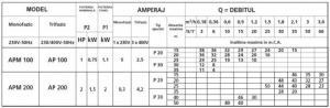 Hidrofor cu ejector SPERONI APM 200/60