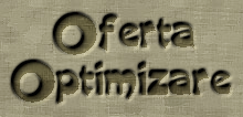 Optimizare website