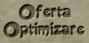 Optimizare website