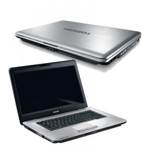 Laptop Toshiba Satellite Pro L450-13Q PSLY1E-009006EN Argintiu