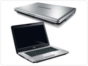 Laptop Toshiba Satellite Pro L450D-14X PSLY6E-005006EN Argintiu