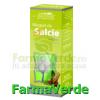 Gemoderivat muguri de salcie 50 ml dacia plant