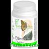 Enteroforte 10 capsule blister medica pronatura