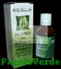 Tinctura Merisor 50 ml Adserv Adnatura