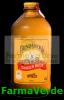 Ginger beer 375ml sano vita