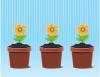 Ghivece pentru flori rotunde sau