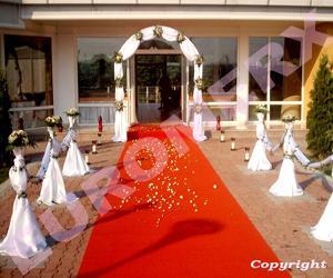 Organizam nunti