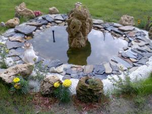 Piatra decorativa naturala