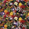 Hartie cu seminte de flori. plantati