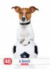 CAIET A5 48F DICTANDO COOL DOG