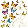 Servetele 33x33cm 3 straturi set20 fluturi color