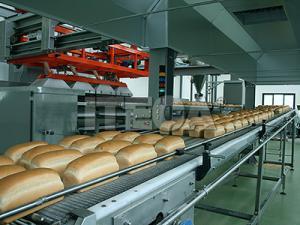 Fabricarea painii