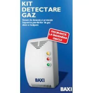 Detector gaze cu electrovana