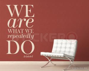 We are what we repeatedly do - sticker perete