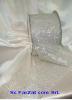 Banda transparenta cu cristale