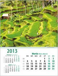 Calendare de perete 2013 | colectia EGO