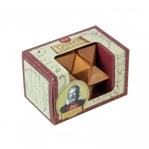 Great Minds - Galileo's Star Puzzle