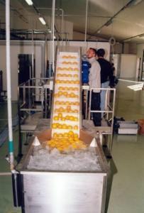 Masina de spalat legume