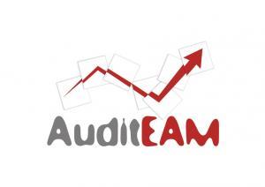 Servicii de audit extern