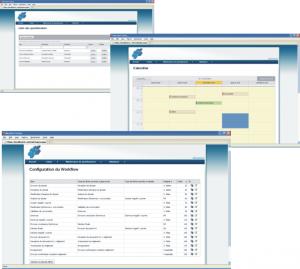 Software aplicatii web