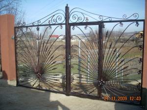 Poarta fier forjat Bacau - Poderale Company Bacau