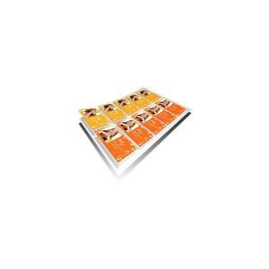 Cartuse imprimanta mp 210