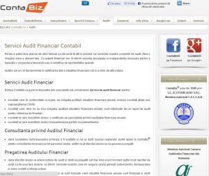 Servicii audit financiar
