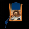 Star wars portofel de gat