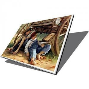 Display laptop acer extensa 5230