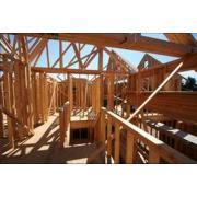 Solutie pentru combaterea daunatorilor din lemn