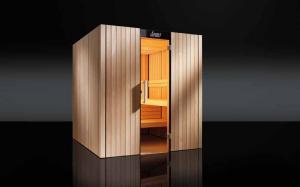 Saune de lux
