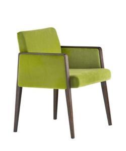 Scaune scaune fotoliu