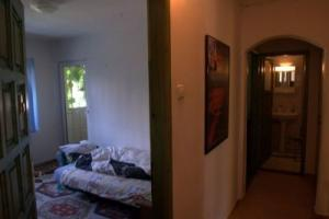 Apartament   Zorilor  Cluj Napoca