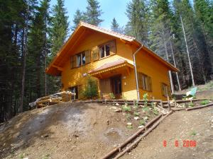 Constructii in lemn
