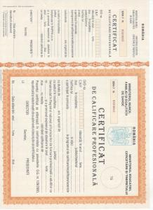 Diploma calificare constructi
