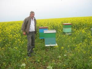 Miere de albine poliflora