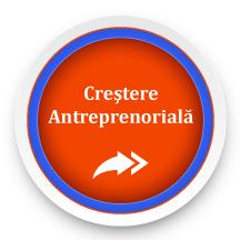 Simularea Cresterii Antreprenoriale