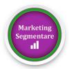 Simulare Marketing: Segmentare si Client Servicing