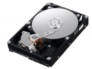 Hard disk ide 80 gb