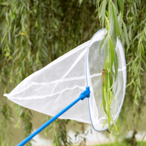 Plasa de prins fluturi si insecte cu maner telescopic