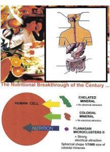 Microhidrina.Cel mai puternic antioxidant