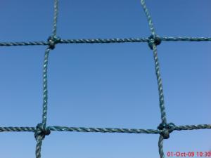 Terenuri sportive