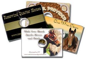 Multiplicare business card CD