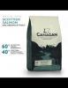 Canagan grain free cu somon 2kg