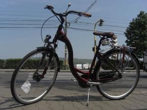 Furca telescopica bicicleta