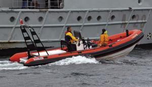 Motoare barci 150 cp