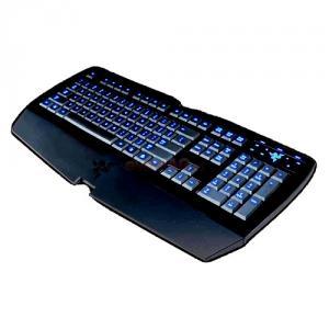 Tastatur lycosa