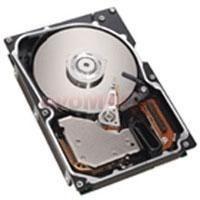 Hard disk server 250gb sata