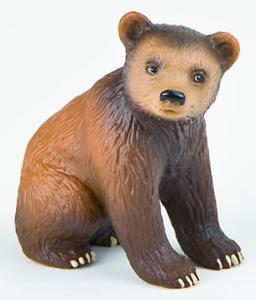 Pui de urs brun