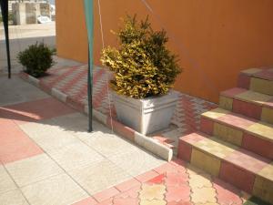 Jardiniere de beton